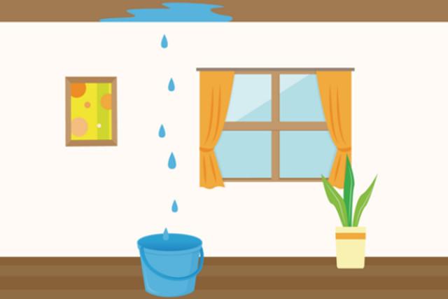 本当に怖い雨漏りの2次被害!雨漏りは早期に対策して害虫予防を